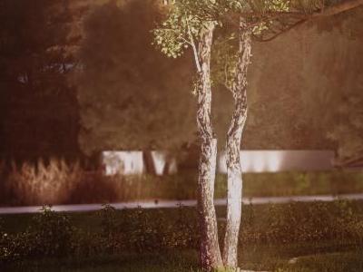 Oświetlenie ogrodu 06